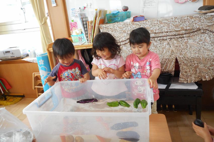 食育指導(3歳児・4歳児・5歳児)