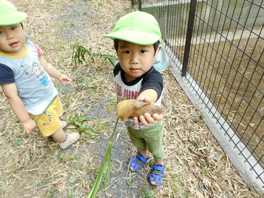 神社へお散歩 2歳児